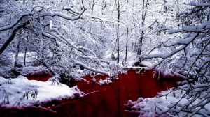 blood winter wallpaper