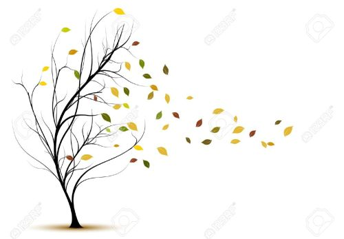 10933004-decorative-tree-silhouette-in-autumn-with-brown-leaves-and-wind-stock-vector
