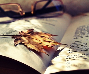 book-leaf-glasses
